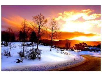 Obraz zimní krajiny (F000192F9060)