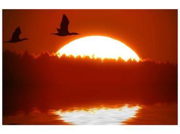 Obraz západu slunce nad vodou (F001050F9060)