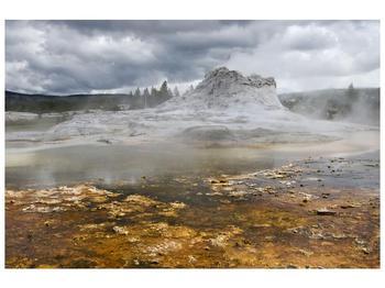Obraz jev přírody (F001553F9060)