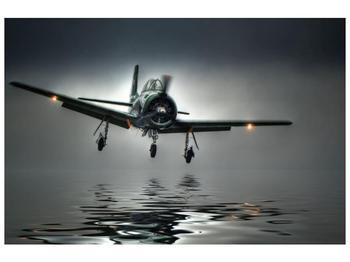 Obraz letadla  (F001593F9060)