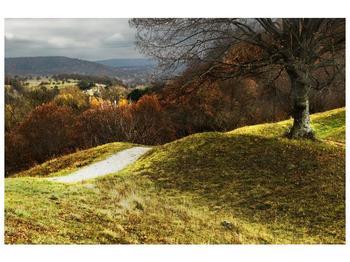 Obraz podzimního pahorku (F001650F9060)