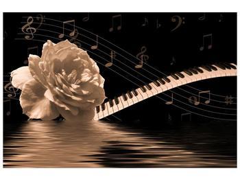 Černobílý obraz růže a klavíru (F001875F9060)