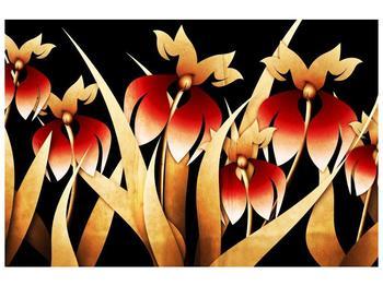 Obraz kreslených květin s červenými lístky (F004136F9060)