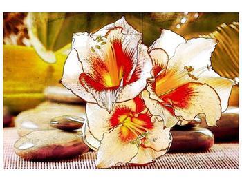 Moderní obraz F004771F9060 (F004771F9060)