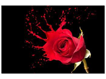 Obraz ruže (K011216K9060)