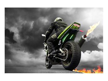 Tablou cu motociclist pe motocicletă (K011383K9060)
