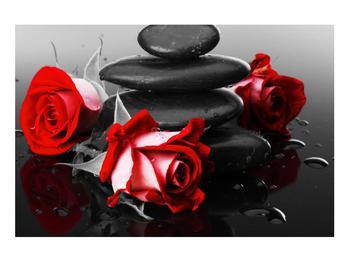 Obraz růže (K011400K9060)
