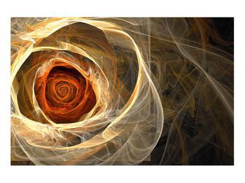 Moderní obraz růže (K011479K9060)