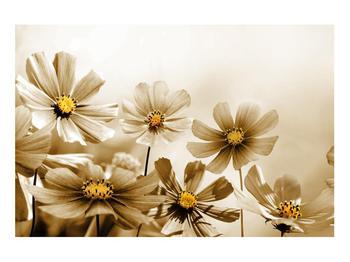 Obraz květů (K011484K9060)