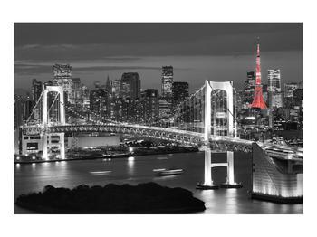 Obraz Brooklynského mostu (K012390K9060)