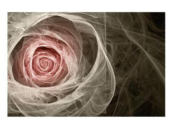 Abstraktní obraz růže (K014988K9060)