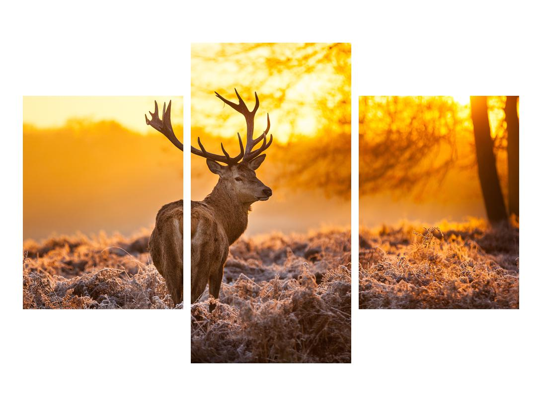 Slika jelena (K011281K90603PCS)