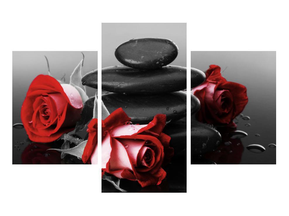 Obraz růže (K011705K90603PCS)