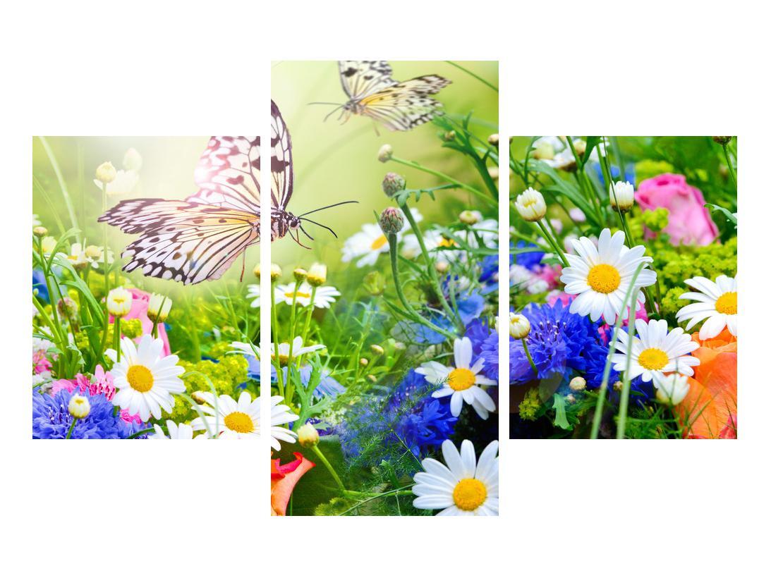 Slika poletnih cvetov z metuljem (K012220K90603PCS)