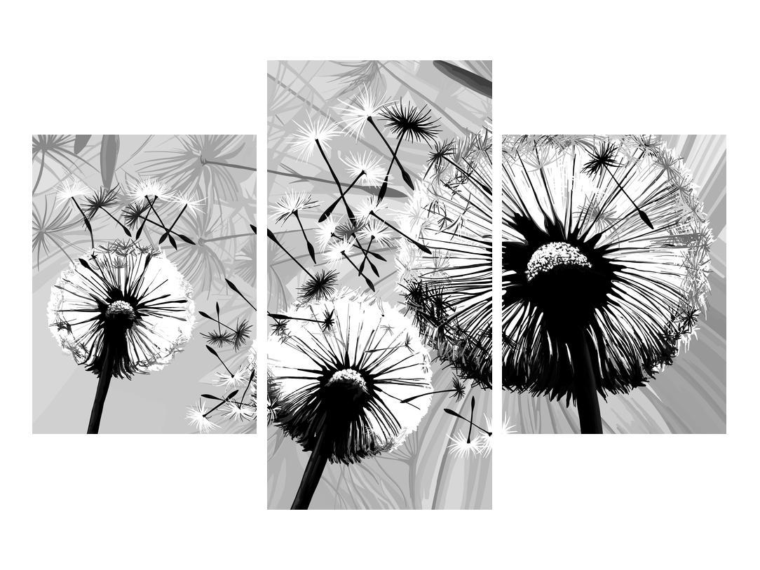 Moderní obraz černobílých pampelišek (K014188K90603PCS)