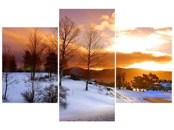 Obraz zimní krajiny (F000031F90603PCS)