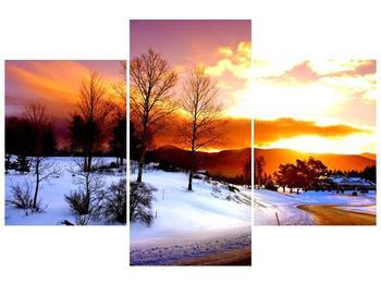 Obraz zimní krajiny (F000192F90603PCS)