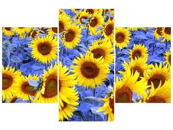 Obraz slunečnic (F000619F90603PCS)