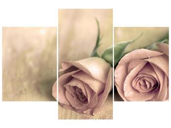 Obraz jemných růží (F001212F90603PCS)