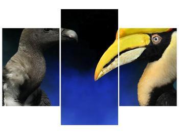 Obraz ptačích zobáku (F001358F90603PCS)