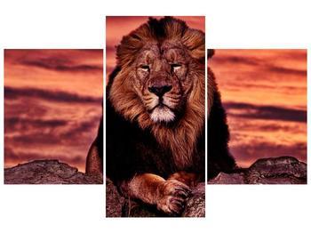 Obraz krále zvířat (F001507F90603PCS)