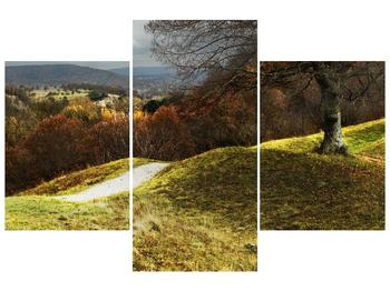 Obraz podzimního pahorku (F001650F90603PCS)