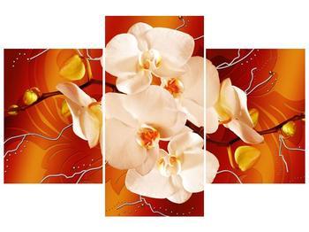 Obraz bílých orchidejí (F005694F90603PCS)