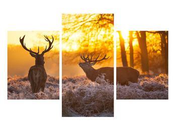 Obraz jelenů (K011267K90603PCS)