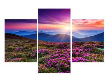 Obraz horské rozkvetlé krajiny (K011322K90603PCS)