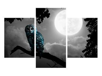 Tablou cu bufnița nocturnă (K012185K90603PCS)