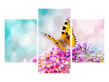 Obraz motýla na květech (K012351K90603PCS)