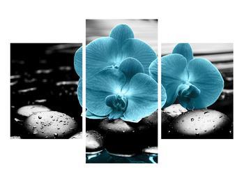Tablou cu flori de orhidee albastre (K012398K90603PCS)
