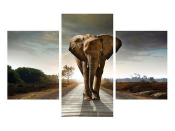 Tablou cu elefant (K012479K90603PCS)