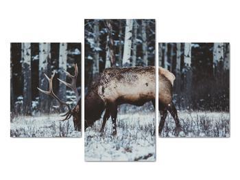 Obraz - jeleň v zime (V020179V90603PCS)