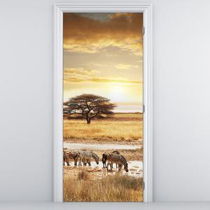 Fototapeta pentru ușă - zebre (D011346D95205)