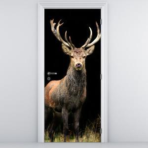 Fotótapéta ajtóra - csodálatos szarvas (D011368D95205)