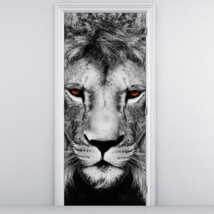 Fototapeta na dveře - lev (D011390D95205)