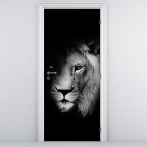 Fotótapéta ajtóra - oroszlán (D011394D95205)