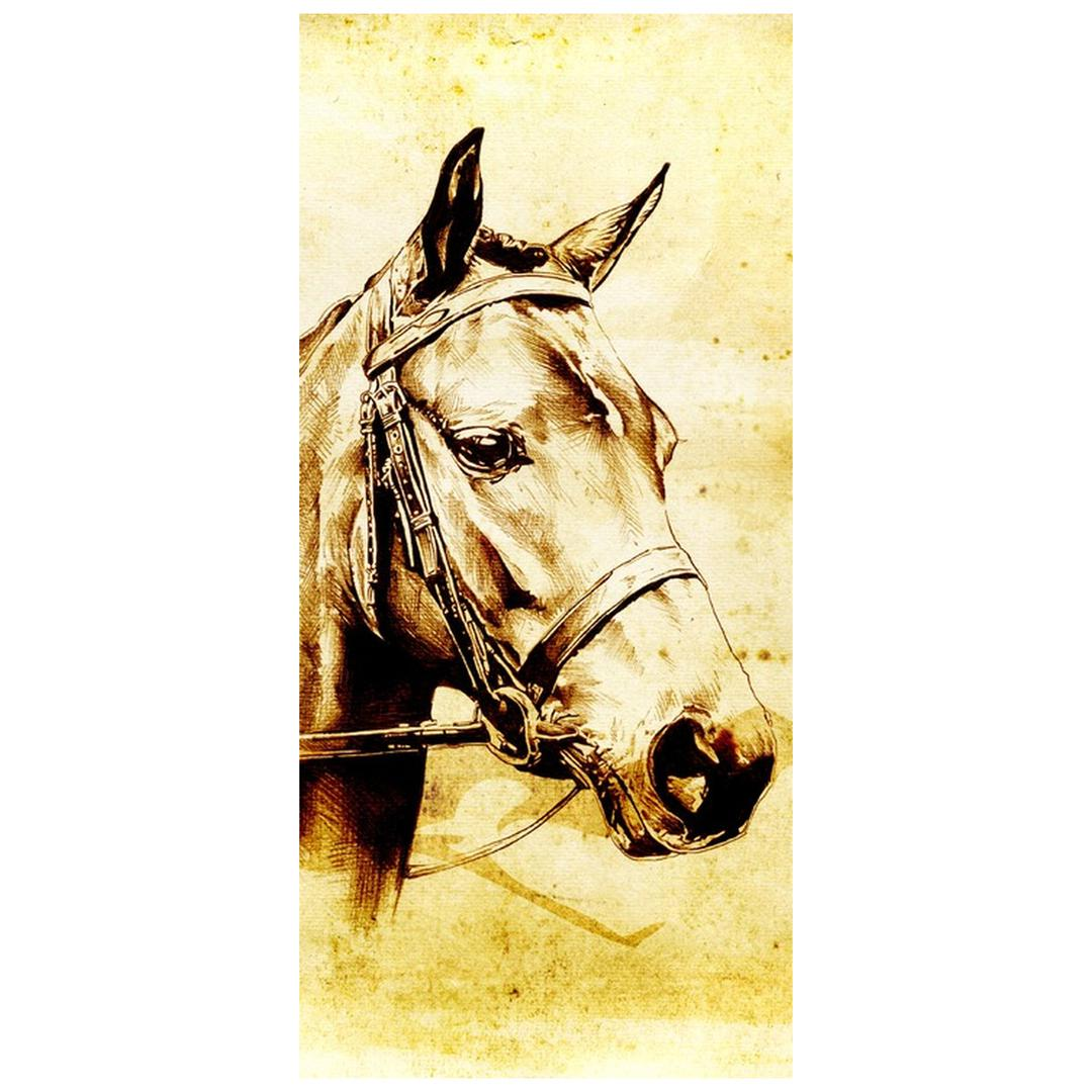 Foto tapeta za vrata - konjska glava (D011901D95205)