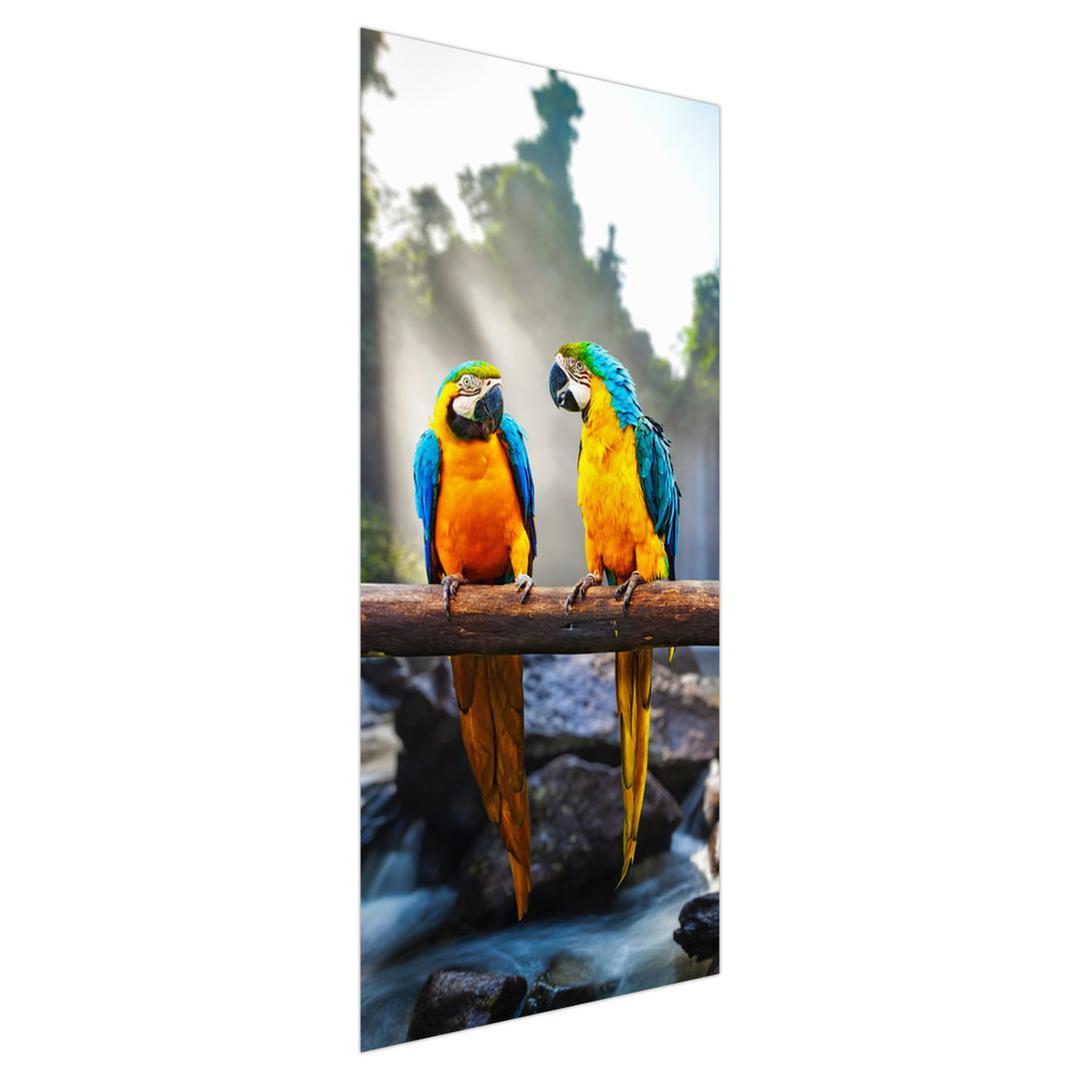 Fototapeta na dveře - Tři papoušci (D011994D95205)