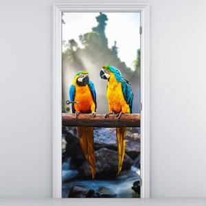 Fototapeta na dvere - Traja papagáji (D011994D95205)