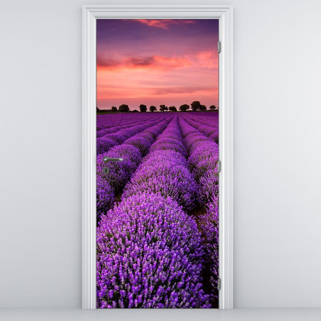 Fototapeta na dvere - Levanduľová krajina (D011996D95205)