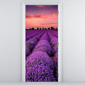 Fotótapéta ajtóra - Levandulás táj (D011996D95205)