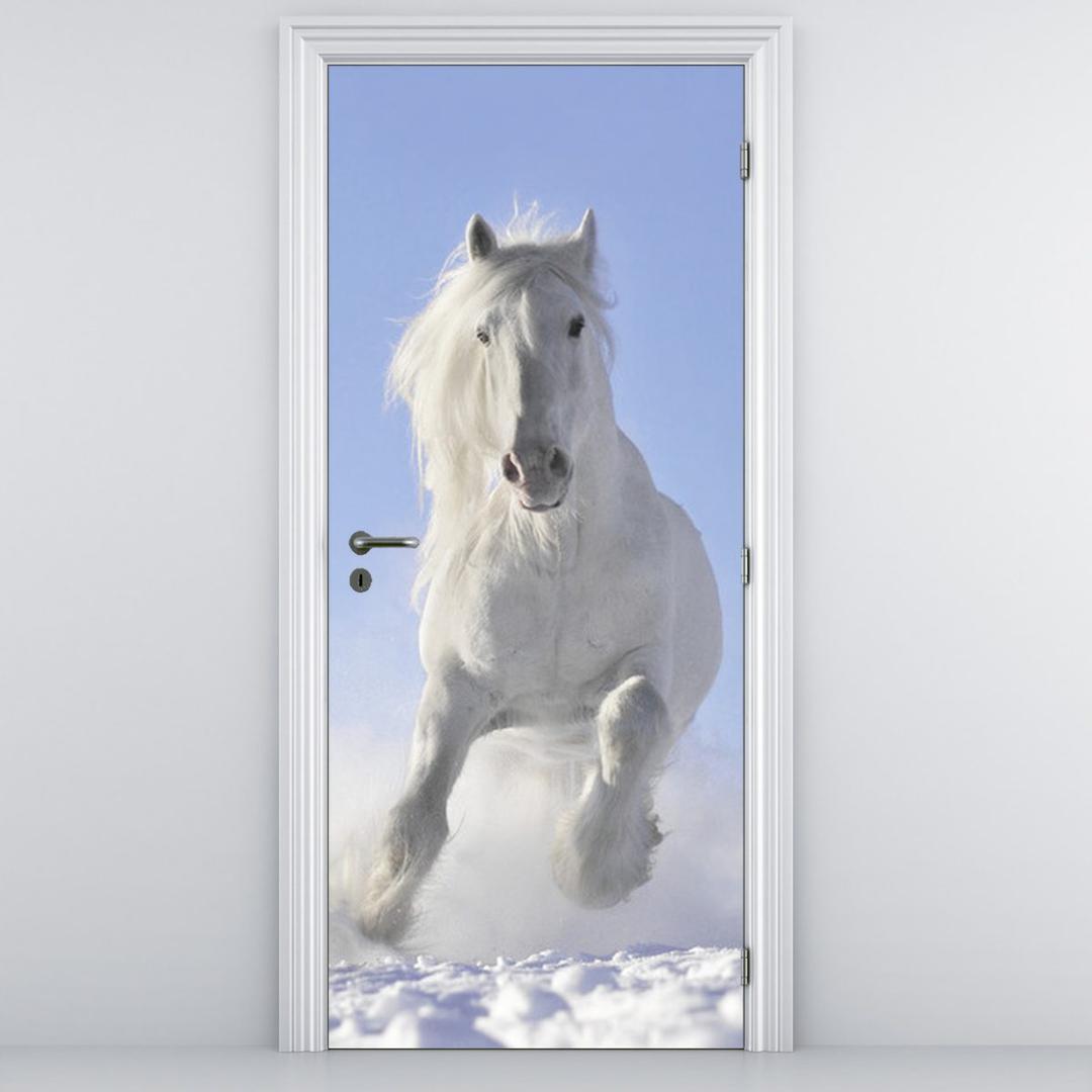Foto tapeta za vrata - Bijeli konj (D012039D95205)
