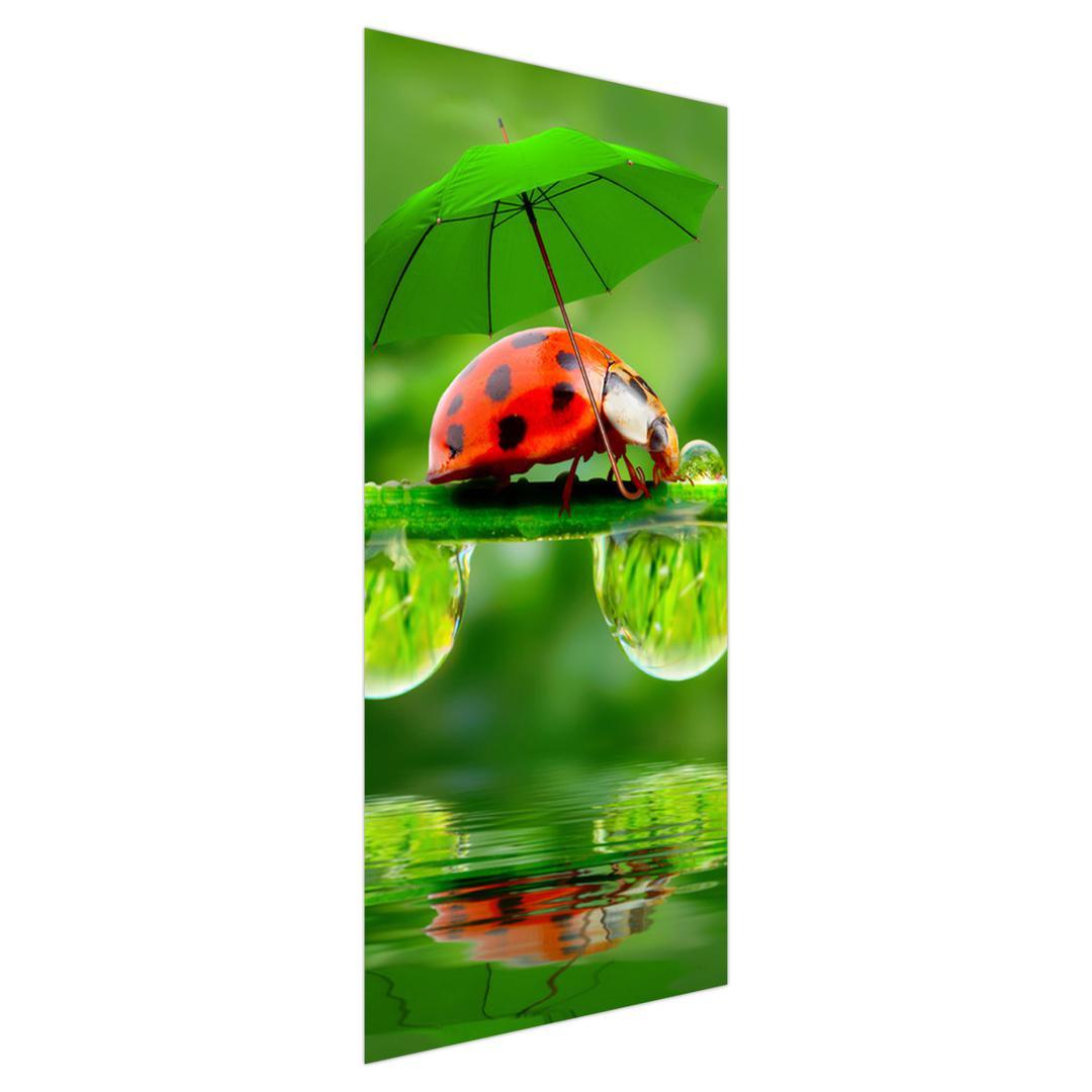 Fototapeta na dvere - Lienka s dáždnikom (D012043D95205)