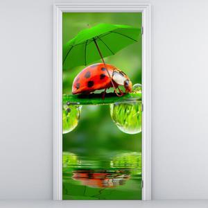 Fototapeta na dveře - Beruška s deštníkem (D012043D95205)