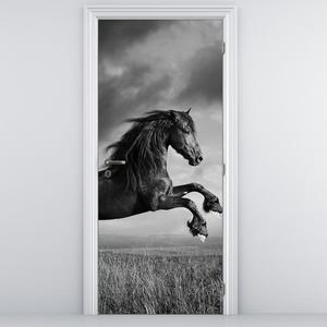 Fotótapéta ajtóra - Ló (D012248D95205)