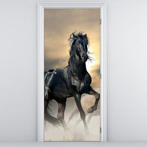 Fototapeta na dvere - Čierny kôň (D012491D95205)