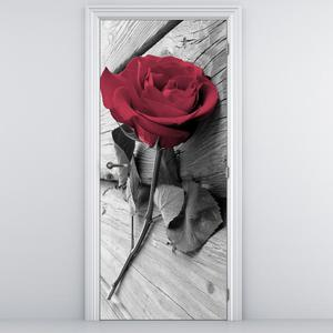 Fototapeta na dveře - Rudá růže (D013347D95205)