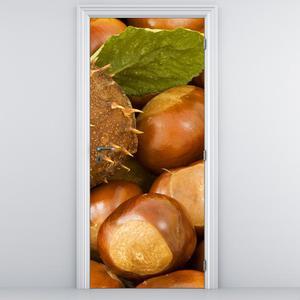 Fototapeta na dveře - Kaštany (D014804D95205)